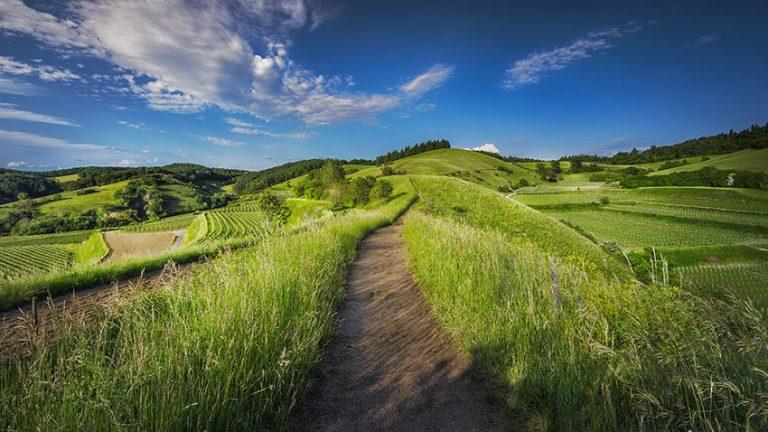 paysage-hautegaronne-campagne-nature-garonne