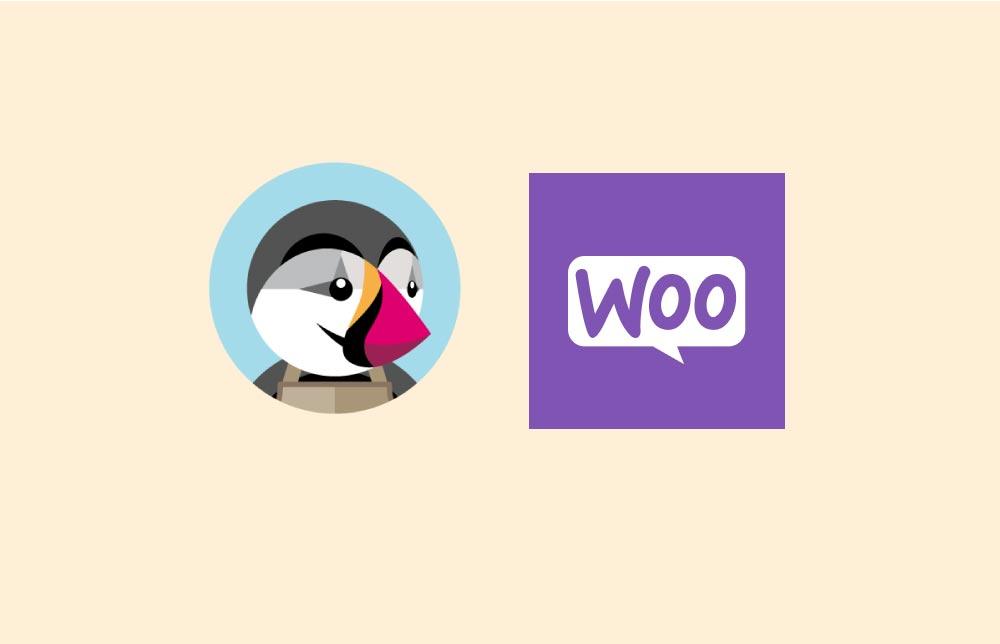 Création de sites e-commerce : PrestaShop VS WooCommerce 🛍