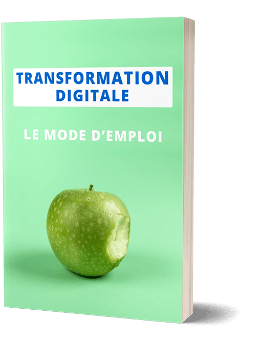cover-ebook-transfo-digit-janv-2019