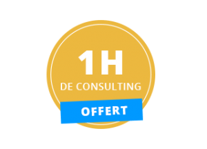 icone-offert-consulting